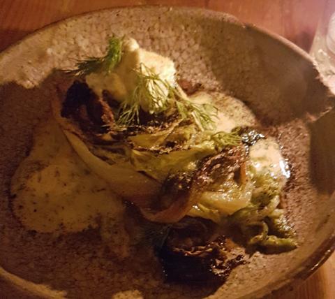 cabbage 480